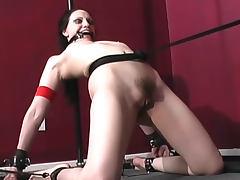 Gagged girl bent in bondage tube porn video