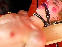Skinny girl in ball gag must suck dick