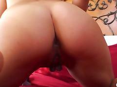 Pretty Brunette Elizabeth Fox Masturbates with a Coloful Dildo