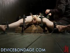 Brunette Girl Getting Tortured with Clothespins all Over Her Body