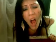 Asian ladyboy webcam jerking