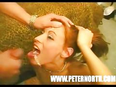 Compilado del lechero Peter North tube porn video
