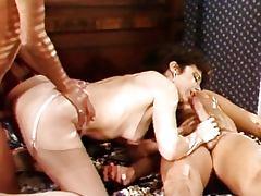 Joanna Collins Pleasure Dream