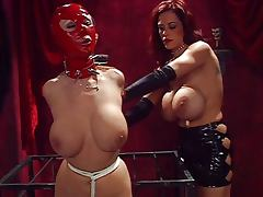 I want to be your bondage doll porn tube video