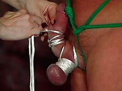Bondage fetish guy testicle pain
