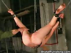 Brutal, Bondage, Bound, Brutal, Punishment, Spanking