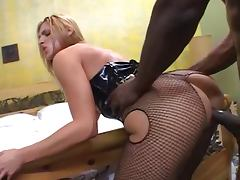 Lauren Phoenix Interracial