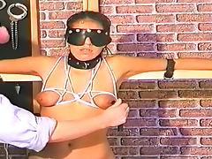 Blindfolded, Babe, Blindfolded, Bondage, Boobs, HD