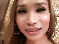 Classy Asian Ass on Trannies gold tube porn video