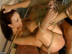 Bondage, BDSM, Bondage, Tied Up, Hogtied