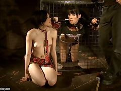Bold Brunette Loves To Be Caged and Treated Like An Animal