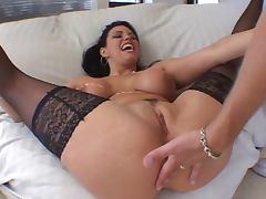Boobs, Big Tits, Boobs, Lingerie, Nylon, Tits