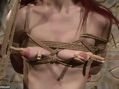 Redhead sex slave Niki Fox is trapped for fetish