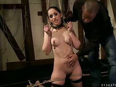 Roped and groped porn