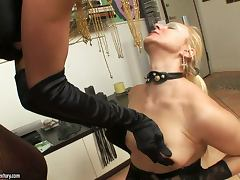 Blonde Mature Likes It Weird So She Has A Shemale