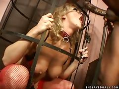 Sexy blond Bree Olson is used and abused