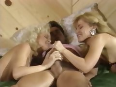 Peter North With Britt Morgan And Lauryl Canyon porn tube video