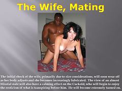 Adultery, Adultery, Cuckold, Interracial, Swingers