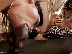 Compilation video with hot sluts sucking big hard cocks