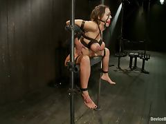James and Trina Playing with a Girl's Ass and Pussy in Extreme Bondage Vid