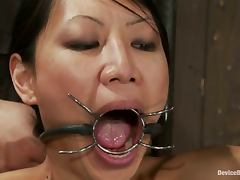 Bound, Asian, BDSM, Bound, Hogtied