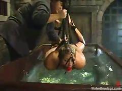 Bondage, BDSM, Bondage, Gagging, Tied Up, Hogtied