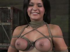 BDSM, BDSM, Brunette, MILF, Punishment, Pierced Nipples
