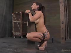 Latina, Babe, BDSM, Blowjob, Brunette, Fucking