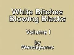 White Whores Blowing Blacks Vol I.avi