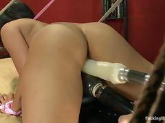 Exotic siren Jasmine Rain needs a wild fucking machine