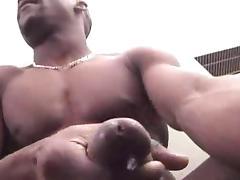 Black Stud Shoots porn tube video