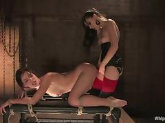 Riley Shy gets tortured and fucked by dominating brunette Sasha Grey porn tube video