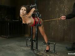All, BDSM, Bondage, Domination, Spanking