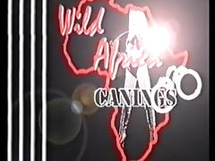 Wild Africa Canings Female Prison Anguish