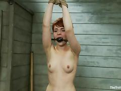 Clothespinned redhead chick gets fucked in her pussy