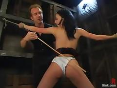 Horny brunette slave is sucking a cock in suspension