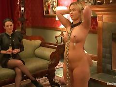 Bondage, BDSM, Bondage, Bound, Humiliation, Slave