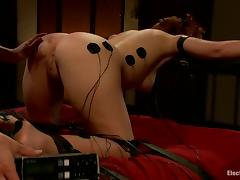 Doggystyle Bondage for Anal and Pussy Strapon Fucking for Brooklyn Lee tube porn video