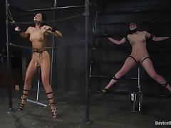 Chained, BDSM, Bitch, Hooker, MILF, Prostitute