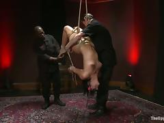 Ashli Orion gets bound and tormented by Jack Hammer