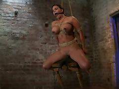 Mouse Traps on Mackenzee Pierce's Nipples While She's Tied and Toyed tube porn video