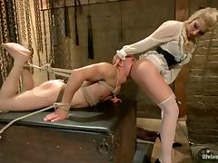 Crazy Femdom and Bondage for Bald Dude Courtesy of Ashley Fires tube porn video