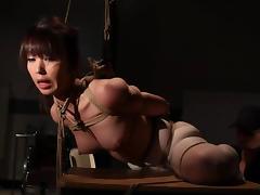 Pretty Marica Hase gets humiliated in bondage video porn tube video