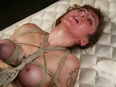 Humiliation, BDSM, Bondage, Bound, Humiliation, Slave