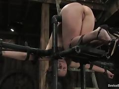 Two bitches get their pussies and asses toyed in bondage vid