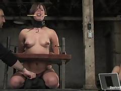 Bondage, BDSM, Bondage, Bound, Brunette, Fetish