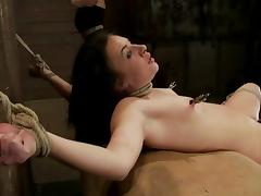 Kinky Ashli Orion licks mistress' tits and gets tortured porn tube video