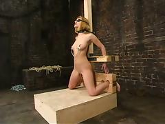 All, BDSM, Bondage, Bound, Dildo, Toys