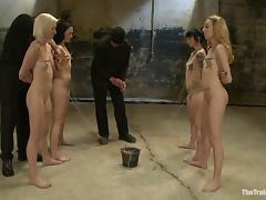 Six slave girls with nice asses get clothespinned