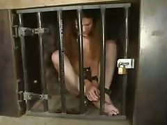 Bondage, BDSM, Bondage, Spanking, Hogtied